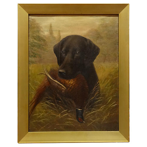 Chebula the Labrador by Henry Crowther