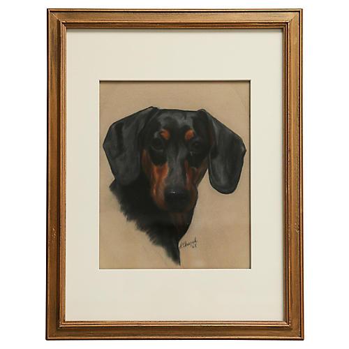 Dachshund Portrait by L. Church