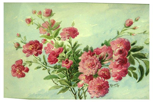 Roses on a Vine