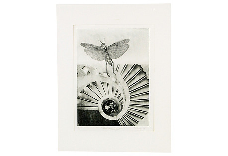 Dragonfly Etching