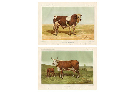 French Cattle Prints, Pair