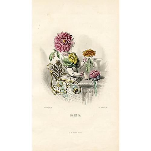 The Dahlia by Jean Grandville, 1860s