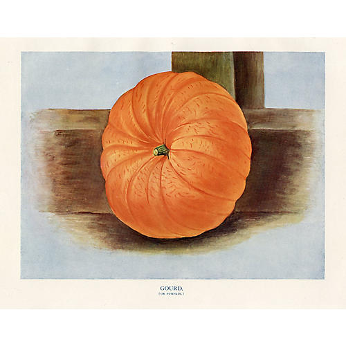 English Pumpkin Print, 1920s