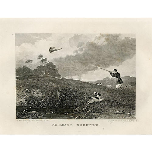 Pheasant Shooting, 1843 Engraving