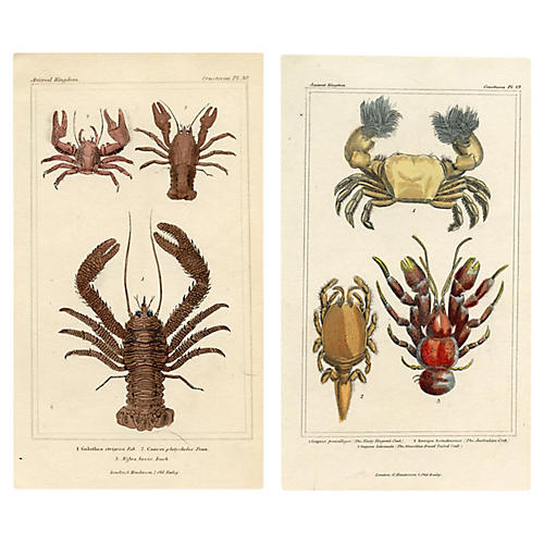 Lobster and Crab Prints, Pair