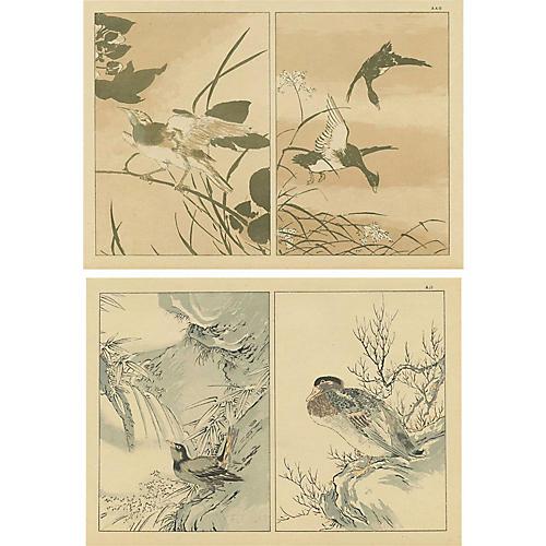 Japanese Bird Studies Pair