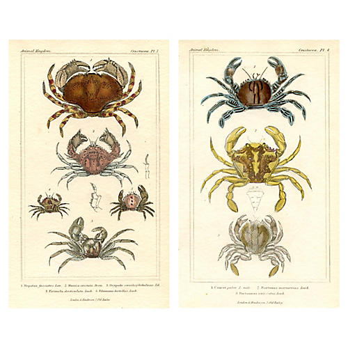 1830s Crab Engravings, Pair