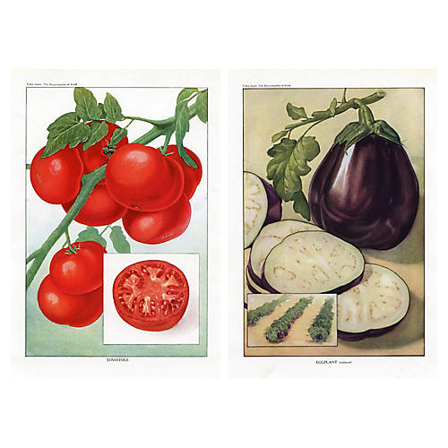 Eggplants & Tomatoes, Pair