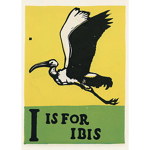 I is for Ibis, C. 1920