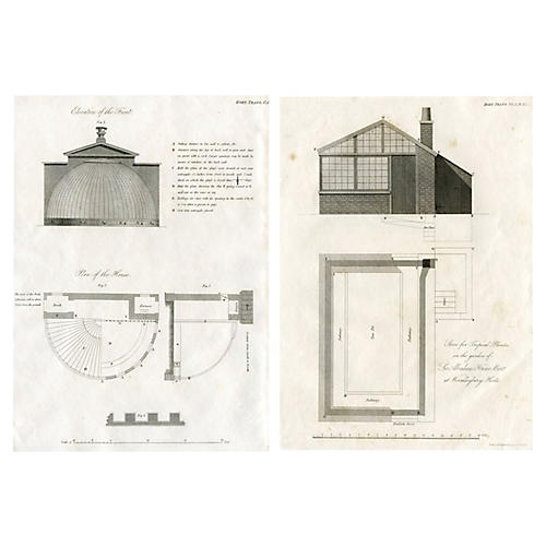 1817 English Greenhouse Designs, Pair
