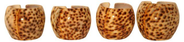 Tiger Cowrie Shells, S/4