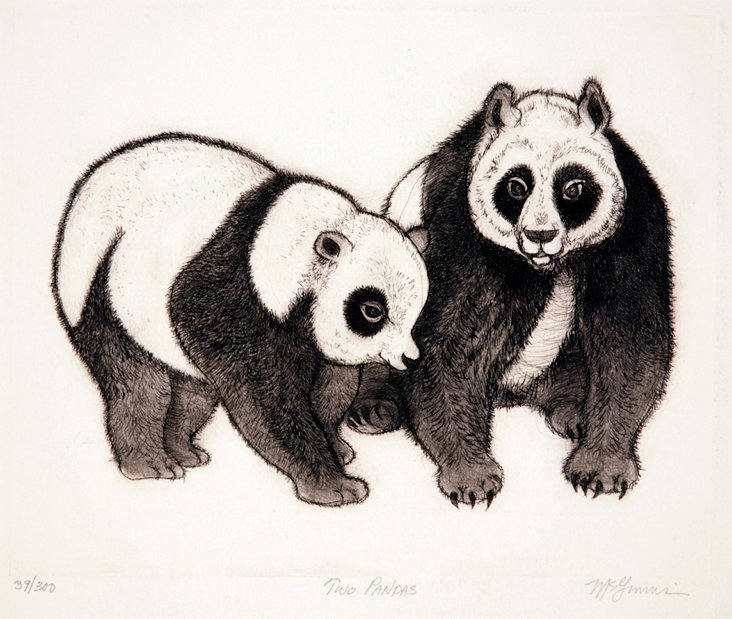 Two Pandas