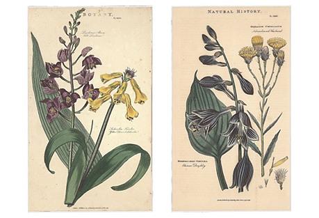 Four Flowers in Brown Silk Mat