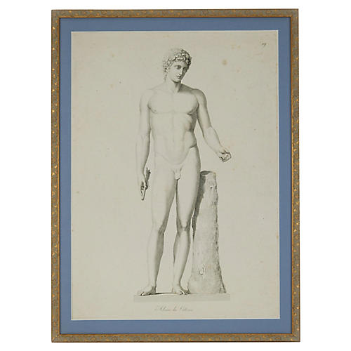 Adonis of the Vatican Engraving