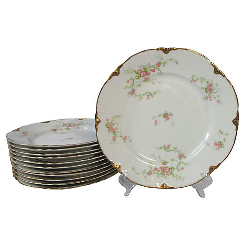 Warwick Roses & Gold Dinner Plates, S/12