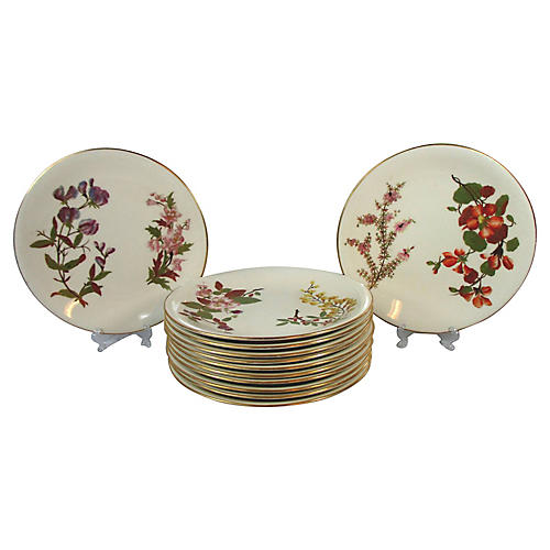 Royal Worcester Plates, S/12