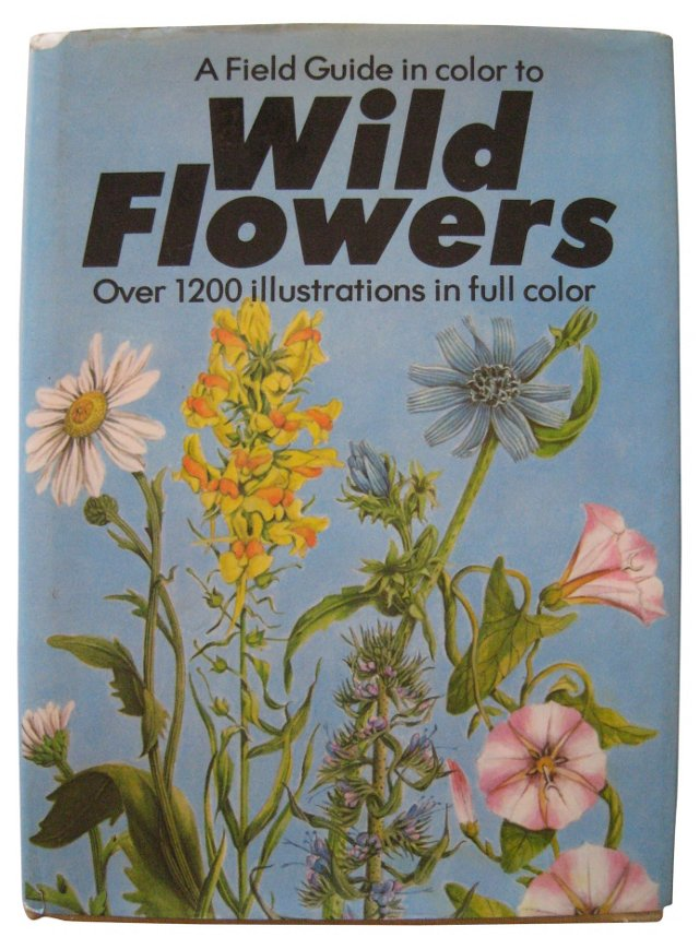 Field Guide to Wild Flowers